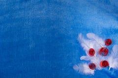 Blauwe achtergrond met veren Stock Afbeelding