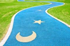 Blauwe asfaltweg via groen gras Stock Foto
