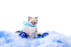 Blauwe bal, decoratie van het nieuwe jaar Stock Foto's