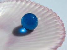 Blauwe bal op halve shell Royalty-vrije Stock Foto's