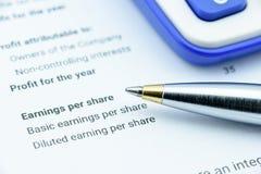 Blauwe ballpoint op de het inkomensverklaring van een organisatie stock afbeeldingen