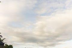Blauwe bewolkte hemelbomen bij voorgrond Stock Afbeeldingen