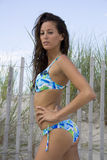 Blauwe Bikini Babe 7 royalty-vrije stock foto