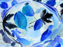Blauwe bladeren in de daling van water Royalty-vrije Stock Afbeelding