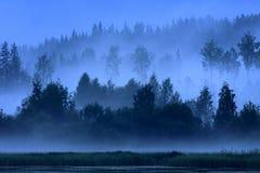 Blauwe blauwe nacht Stock Afbeelding