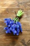 Blauwe bloemen op een raad Stock Afbeeldingen