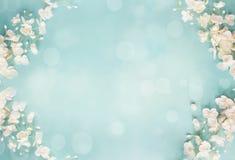 Blauwe Bloemenbokeh-de Lenteachtergrond royalty-vrije stock afbeeldingen