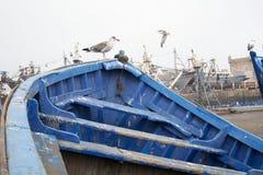 Blauwe boten van Essaouira, Marokko Stock Foto's