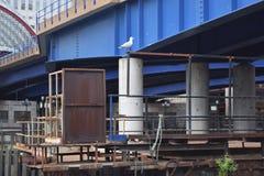 Blauwe brug voor een overgroundtrein over industrieel landgoed Stock Foto's
