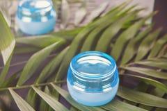 Blauwe container met gezichts of lichaamscr?me op het palmblad stock fotografie
