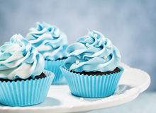 Blauwe cupcakes Stock Afbeelding