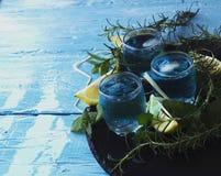 Blauwe curacao likeur of sambuca met citroen stock foto's