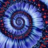 Blauwe de bloem spiraalvormige abstracte fractal van het kamillemadeliefje effect patroonachtergrond Het blauwe violette spiraalv royalty-vrije stock afbeelding