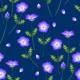 Blauwe de Ogenbloem van de Nemophilababy Vector illustratie op Indigoachtergrond Stock Afbeeldingen