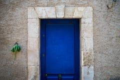 Blauwe deur en groen blad Stock Fotografie