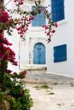 Blauwe deuren, venster en muur van het inbouwen van Sidi Bou Said, Stock Afbeelding