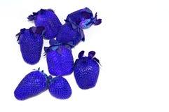 Blauwe die aardbeien op een witte achtergrond worden geïsoleerd Stock Fotografie