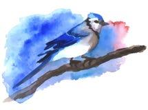 Blauwe die vogel met waterverf op de tak wordt geschilderd Stock Foto