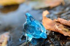 Blauwe dolfijn in een vulklei met gele bladeren Royalty-vrije Stock Afbeeldingen