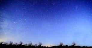 Blauwe donkere nachthemel met vele sterren boven gebied van bomen Yellowstonepark De achtergrond van de Milkywaykosmos royalty-vrije stock foto