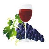 Blauwe druiven en wijn Stock Foto's
