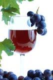 Blauwe druivencluster en rode wijn stock afbeelding