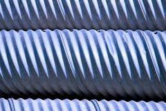 Blauwe Duikers Royalty-vrije Stock Fotografie