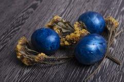 Blauwe eieren met bloemen Stock Foto