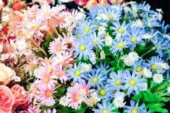 Blauwe en Roze Bloem voor Huisdecoratie Stock Afbeelding