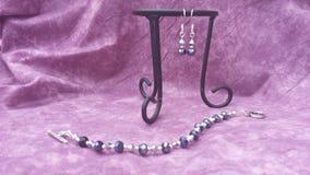 Blauwe en zilveren geplaatste armband en oorringen Royalty-vrije Stock Foto