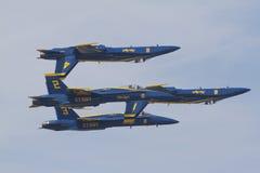 Blauwe Engelen tijdens de vlucht stock foto's