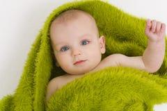 Blauwe Eyed in Groen ook stock fotografie