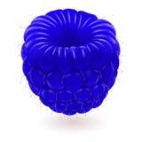 Blauwe framboos. Royalty-vrije Stock Afbeelding