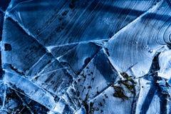 Blauwe gebarsten ijstextuur in overstroomd bos royalty-vrije stock fotografie