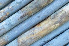 Blauwe gekleurde boomstompen Stock Afbeelding