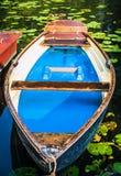 Blauwe gekleurde houten die roeiboot bij de pijler van een meer voor huur door nenuphar wordt omringd Gemeentelijk stadspark hamb Royalty-vrije Stock Foto's