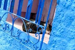 Blauwe gekleurde muren, medina van Rabat, Morocoo royalty-vrije stock foto's