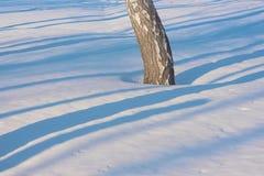 Blauwe gevoelige lijnen van schaduw op de witte sneeuw Royalty-vrije Stock Foto