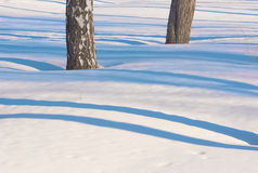 Blauwe gevoelige lijnen van schaduw op witte sneeuw 2 Stock Fotografie