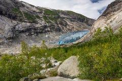 Blauwe gletsjer Nigardsbreen in Noorwegen stock foto's