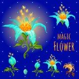 Blauwe gloeiende magische bloemen, stadia van het bloeien vector illustratie