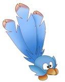 Blauwe grappige vogel Stock Fotografie