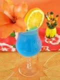 Blauwe Hawaiiaan Stock Afbeelding