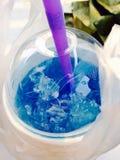 Blauwe hawii Stock Foto