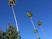 Blauwe hemel in belslucht Royalty-vrije Stock Foto's
