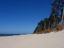 Blauwe hemel bij de Oostzee stock foto's