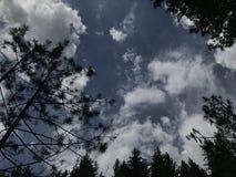Blauwe hemel die met flarden van wolk wordt behandeld stock fotografie