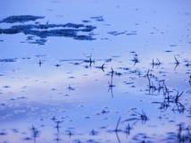 Blauwe hemel die in water nadenkt Royalty-vrije Stock Foto