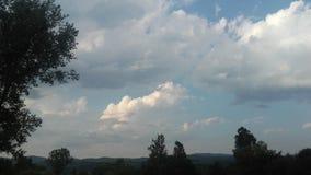Blauwe hemel en bomen royalty-vrije stock afbeeldingen