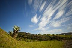 Groen plattelandslandschap stock fotografie